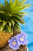 A pineapple with tropical flowers