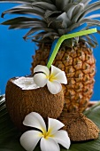 Pina Colade in ausgehöhlter Kokosnuss