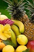 Verschiedene tropische Früchte mit Hibiscusblüte