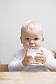 Small boy drinking milk