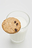 A glass of milk with a wholemeal biscuit