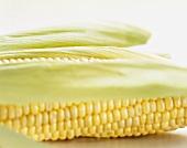 Corn on the cob with husks
