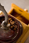 Old coffee mill with coffee beans (from above)