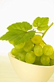 White grapes with leaf in white bowl