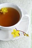 A cup of St. John's wort tea