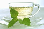 A cup of nettle tea
