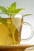 Tea with lemon balm