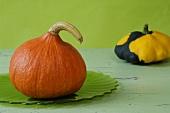 A Hokkaido pumpkin and a black and yellow squash