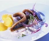 Matjes mit Sahnesauce und Salzkartoffeln