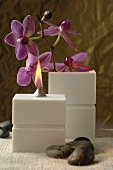 Aroma oil lamp with orchids
