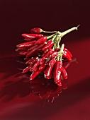 Red chillies (Piri-piri)