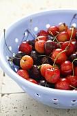 Sweet cherries in a colander (detail)