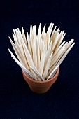 Spanish toothpicks in a terracotta pot