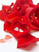 Red rose petals and hearts