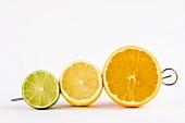 Half a lime, half a lemon and half an orange on a skewer