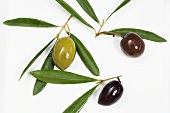 Three different olives and leaves