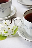 Two Cups of Tea with White Spring Flowers
