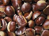 Chestnuts (macro zoom)