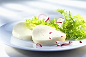 Mozzarella with radishes and frisee lettuce