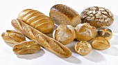 Various types of bread and rolls
