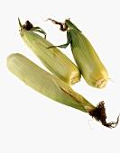 Three corncobs