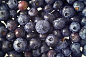 Blueberries, filling the picture