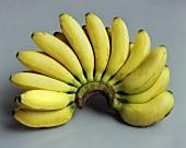 Bunch of small bananas