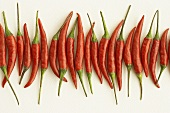 Red chili peppers lying in a row
