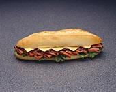 Roast Beef and American Cheese Submarine Sandwich