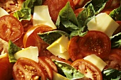 Sliced Tomato, Basil and Cheese Salad; Full Frame