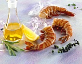 Fresh shrimp tails with pepper, tarragon and oil