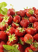 A heap of fresh strawberries