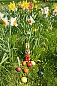 Easter Bunny and eggs in grass with narcissi in background