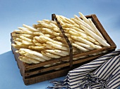 White asparagus in wooden basket