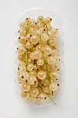 White currants in a plastic punnet