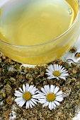 Daisy tea with fresh and dried daisies