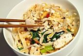 Noodles with chicken breast and vegetables