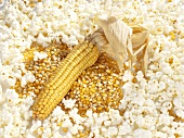 Cob of corn and corn kernels surrounded by popcorn