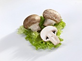 Chestnut mushrooms on a lettuce leaf