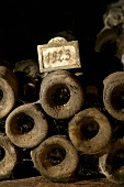 Old wine bottles in Jean-Louis Trapet's wine cellar, Burgundy