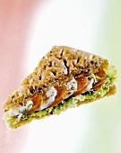 A tomato and mozzarella sandwich