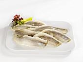 Matjes herring fillets on a platter