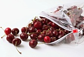 Cherries falling out of a plastic bag