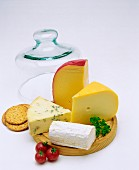 Cheeseboard of various cheeses with glass cheese cover in background