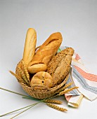 A bread basket with rolls and white bread