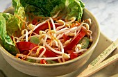 A salad of bean sprouts, peppers and leek
