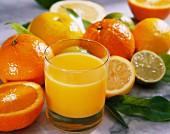 Freshly squeezed orange juice with citrus fruits