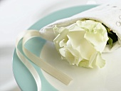 White rose wrapped in napkin on plate