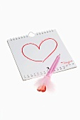 Valentine's Day: heart drawn on a calendar