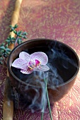 Orchid flower in bowl, incense sticks